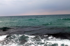 IMG_6562 (צהרי שבת בטיילת נמל תל אביב)